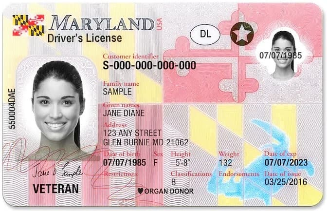 Maryland drivers license.