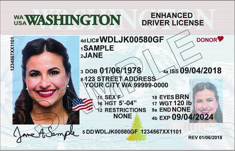 Sample of WA drivers license.